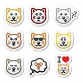 Fényképek Macska címkék beállítása - boldog, szomorú, dühös elszigetelt fehér