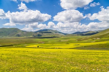 Summer landscape at Piano Grande mountain plateau, Umbria, Italy