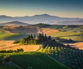Malebná krajina Toskánsko s kopce a údolí zlatých ranního světla, Val dOrcia, Itálie