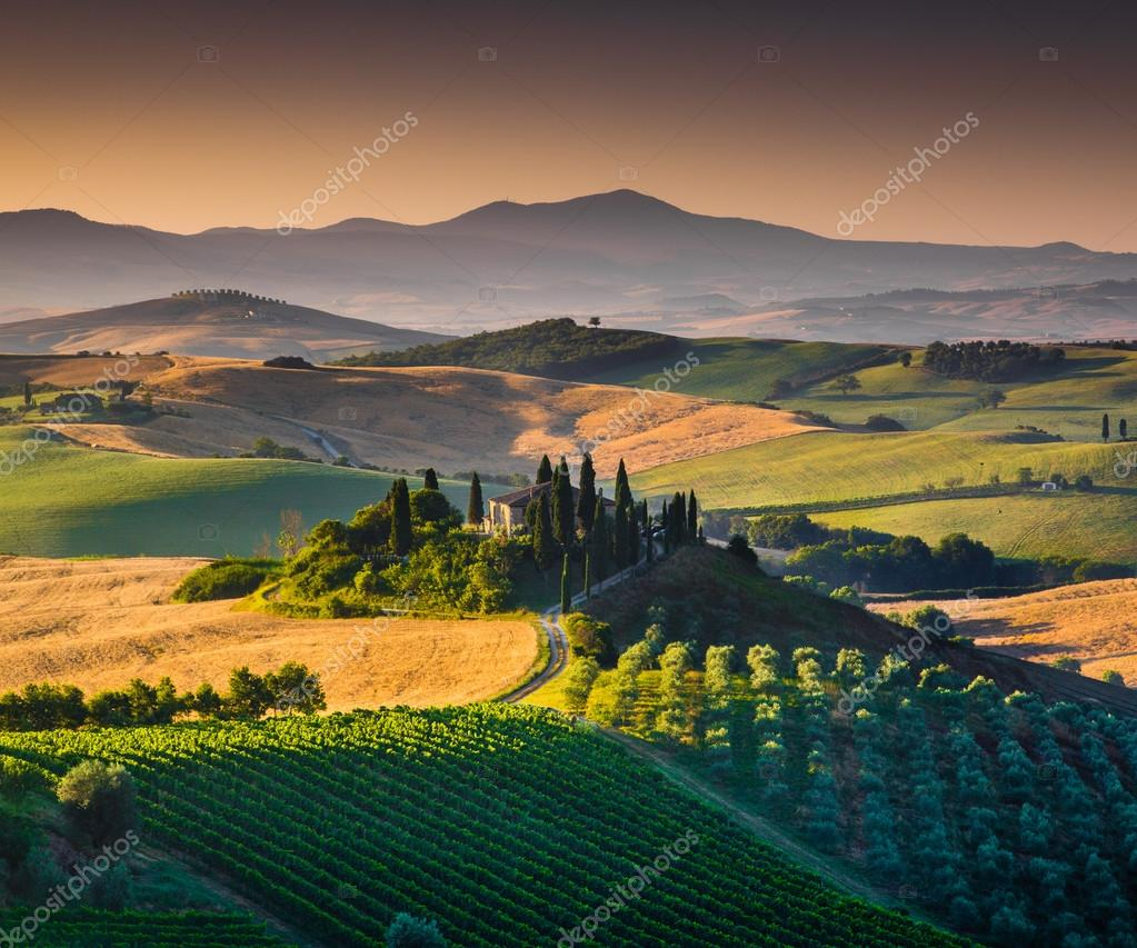 Scenic Tuscany landscape with rolling hills and valleys at sunset, Val d'Orcia, Italy