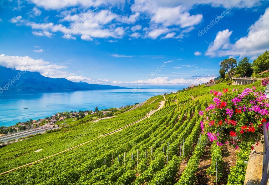 Beautiful Lavaux wine region at Lake Geneva, Canton of Vaud, Switzerland