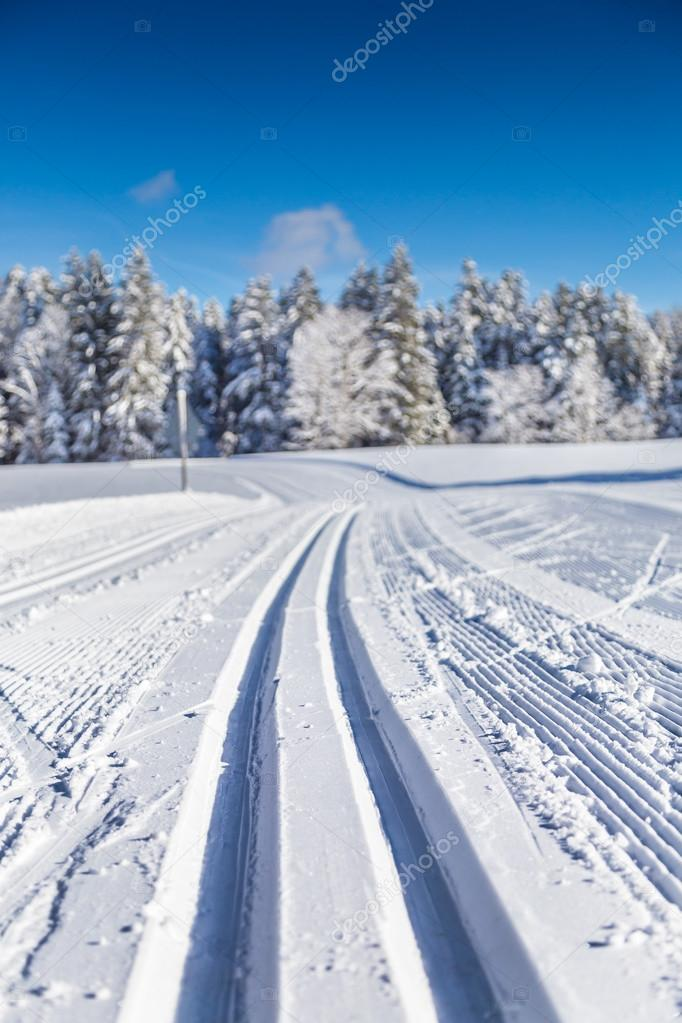 Cross-country skiing track in winter landscape