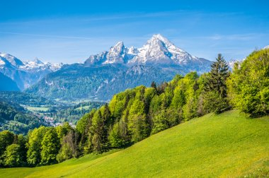 Idyllic alpine landscape with green meadows, farmhouses and snowy mountain tops