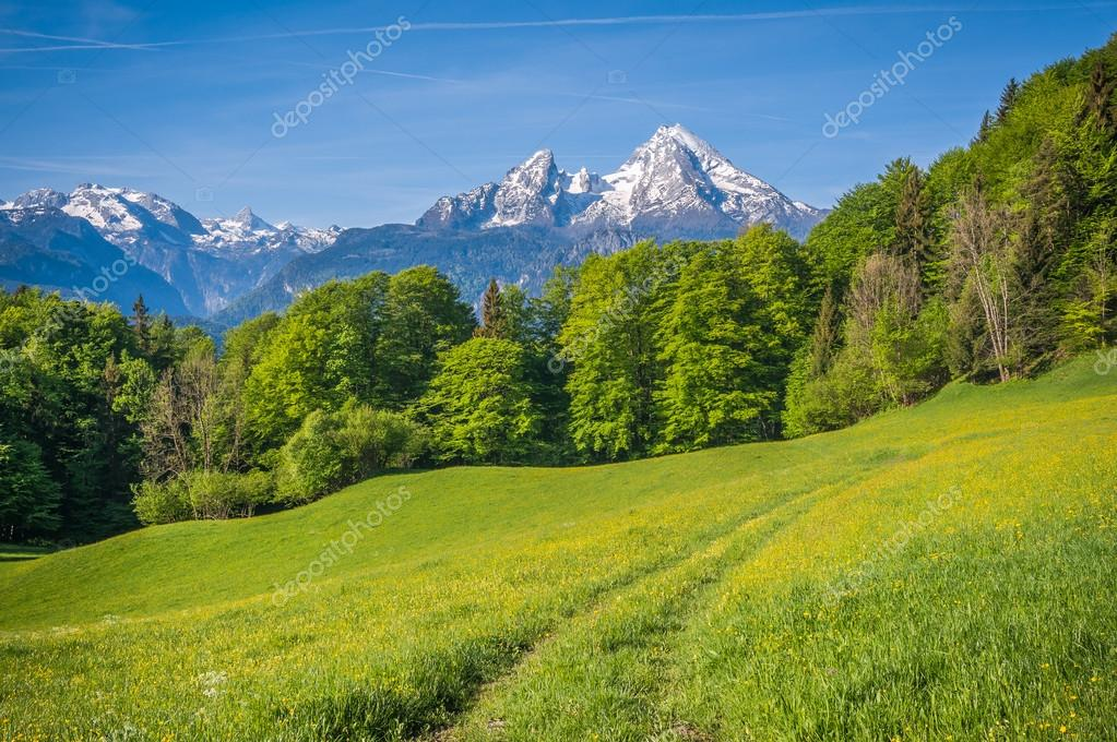 Idyllic landscape in the Alps with hiking path and mountains