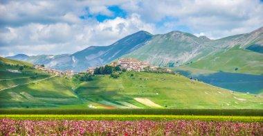 Famous Castelluccio di Norcia with beautiful summer landscape, Umbria, Italy