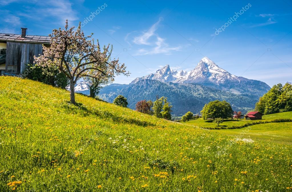 Idyllic alpine landscape with green meadows, farmhouses and snowcapped mountain tops