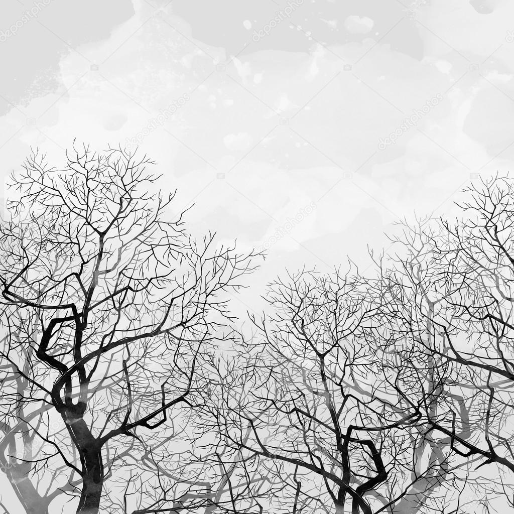 spring bare trees