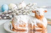 Velikonoční jehněčí dort vejce a Jehnědy na modrém pozadí