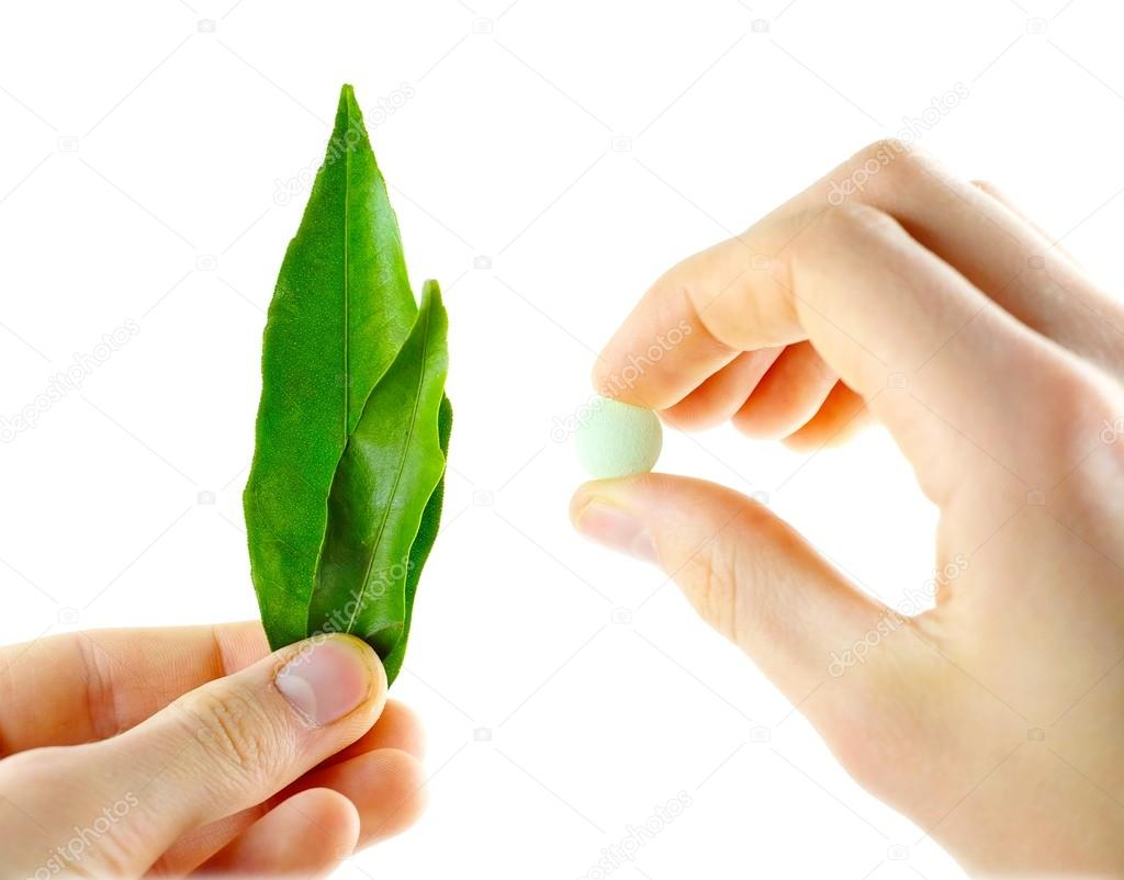 Natural medicines and pills in the hands of