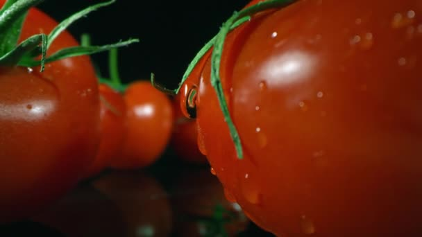 Oddálit makro záběry velké lesklé kapky vody padající z domácího zralého červeného rajčete s ocasem na černém skle mimo jiné čerstvými rajčaty