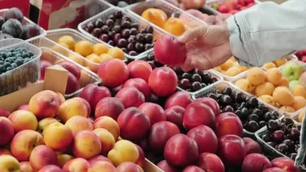 Kézzel tartott közelről felismerhetetlen férfi áll a gyümölcsös standon, és választotta a friss nektarin a piacon