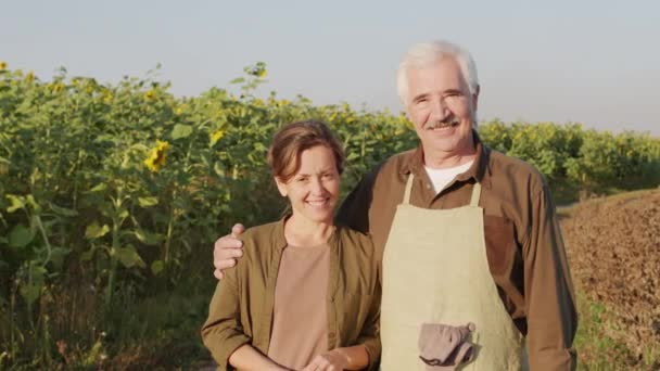 Tracking medium portrait of couple of multi-generational farmers standing in sunflower field in summer smiling to camera