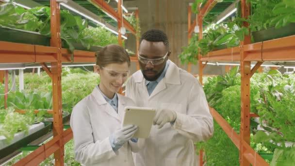 Lassú mozgású közepes portré többnemzetiségű fiatal botanikus párról, akik a kutatásaikat vitatják meg, majd digitális táblagéppel állva mosolyognak a fényképezőgépre egy nagy, kortárs vertikális gazdaságban.