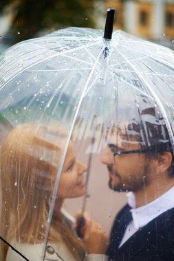 Affectionate couple under umbrella