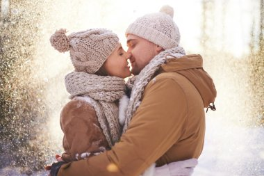 Young loving couple in winterwear kissing in snowfall in winter park stock vector