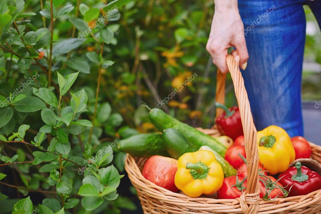 Risultati immagini per verdure contadino