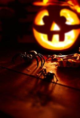 Halloween spiders  and jack-o-lantern