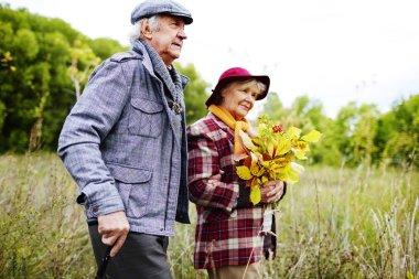 Elderly couple autumn in park