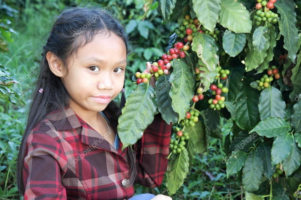 Girl in coffee plantations