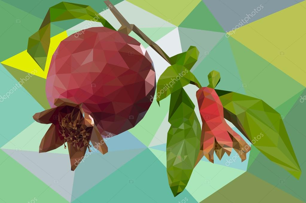 Pomegranate fruit in polygons
