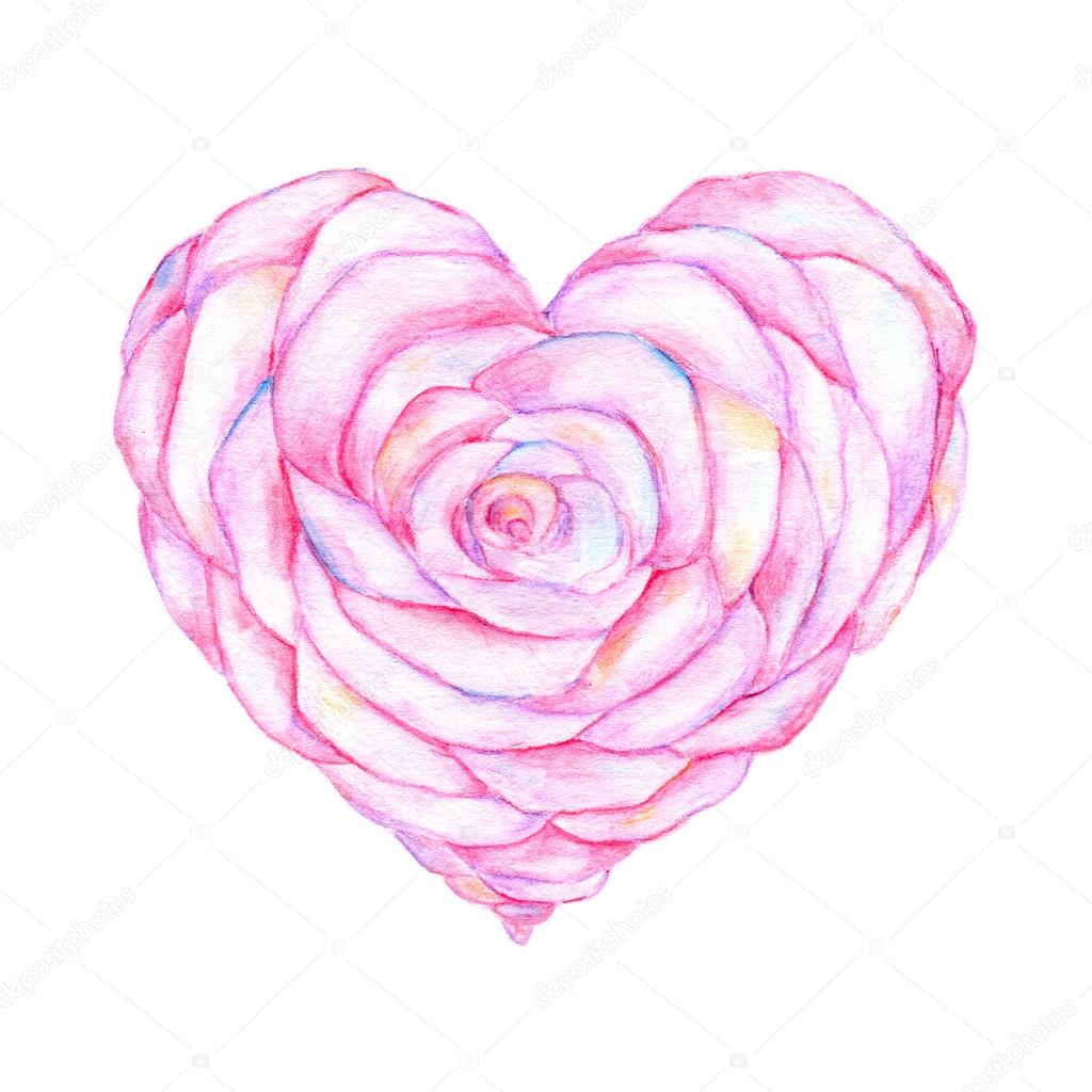 Rose In The Shape Of Heart Watercolor Work Stock Photo