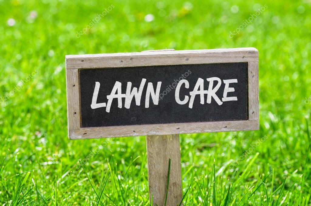early spring lawn care tips - 1050×700