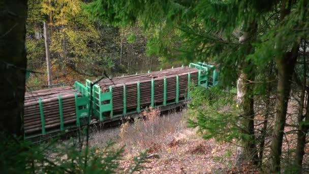 Vlak s dřevěným nákladem pohybující se úžasným zeleným lesem v podzimním dni spbas.