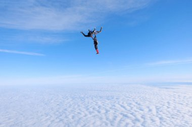 Skydiving. Three friends are flying and having fun in the blue sky.