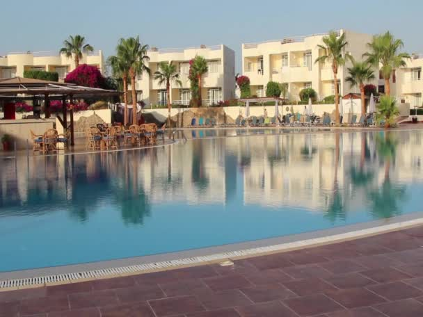 Sharm El Sheikh, the morning at the pool