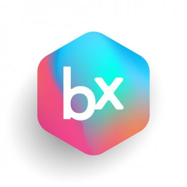Letter BX logo in hexagon shape and colorful background, letter combination logo design for business and company identity. icon