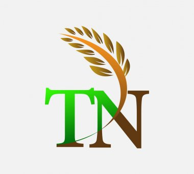 Initial letter logo TN, Agriculture wheat Logo Template vector icon design colored green and brown. icon