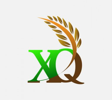 Initial letter logo XQ, Agriculture wheat Logo Template vector icon design colored green and brown. icon