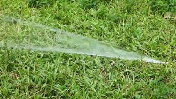 The lawn sprinkler