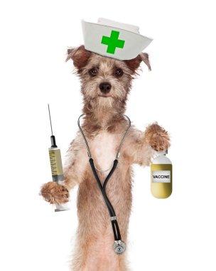Dog Nurse with Vaccine Bottle