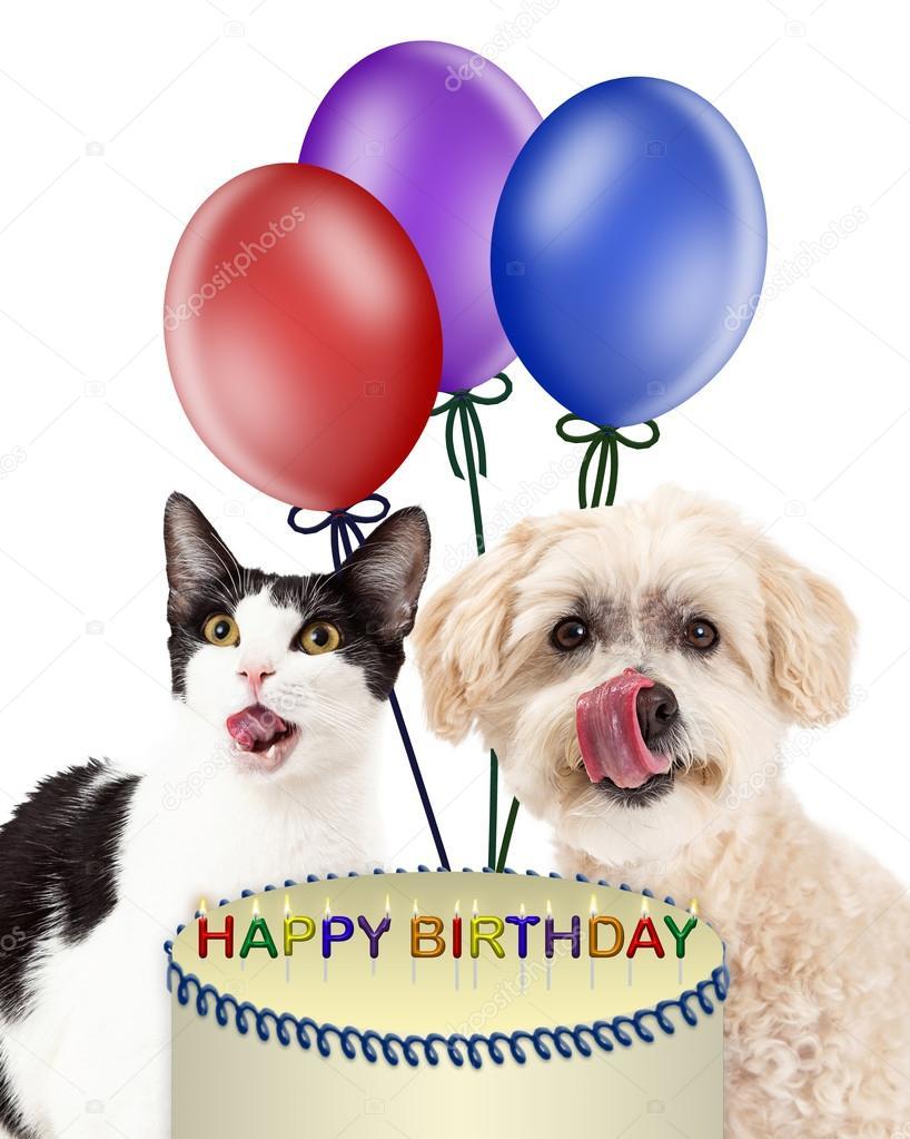 Открытка с днем рождения с собакой и котом, именем виктор