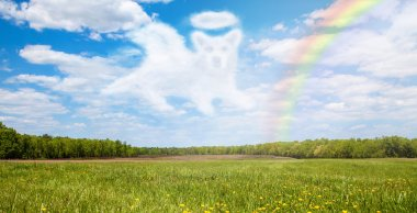 field with cloud shaped like dog