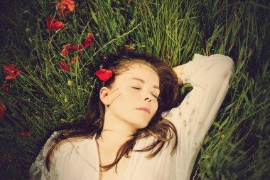 Beautiful girl in a field of flowers