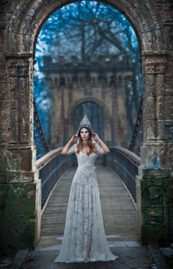 Lovely young lady wearing elegant white dress and silver tiara posing on ancient bridge, ice princess concept. Pretty brunette girl in long wedding dress posing in winter scenery, gothic ice queen