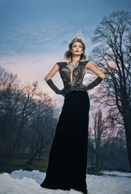 Lovely young lady posing dramatically with long black dress and silver tiara in winter scenery. Brunette woman with cloudy sky in background - outdoor shot. Glamorous female in nature - gothic style