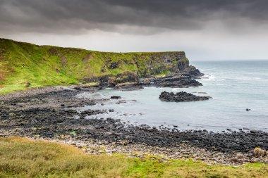Beautiful coast landscape