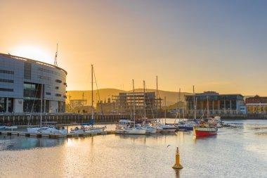 Belfast city at sunset