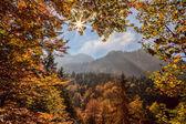 Fotografie Alpen in Bayern mit sonnigen Strahlen im Herbst in Deutschland