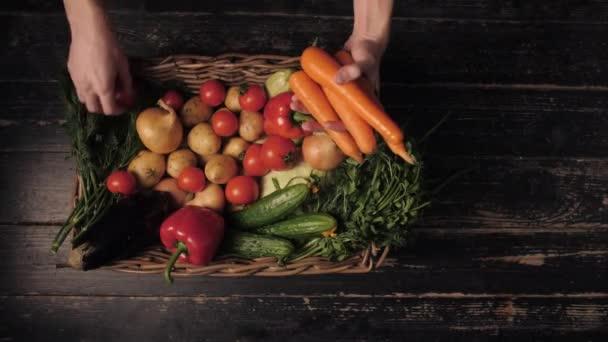 Ekologická zelenina. Farmářský ruce s čerstvě sklizenou mrkví. Čerstvé organické mrkve. Trh ovoce a zeleniny