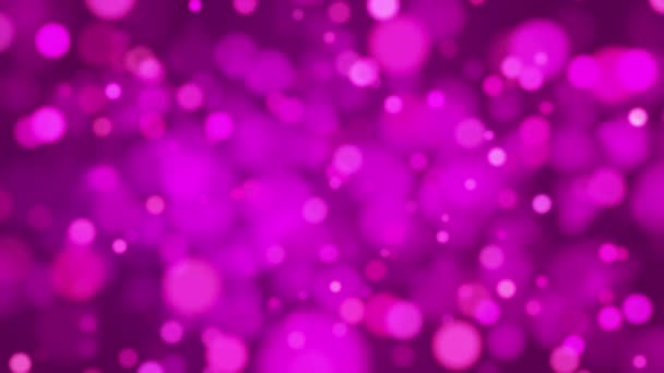 Broadcast Light Bokeh, Magenta, Events, Loopable, HD