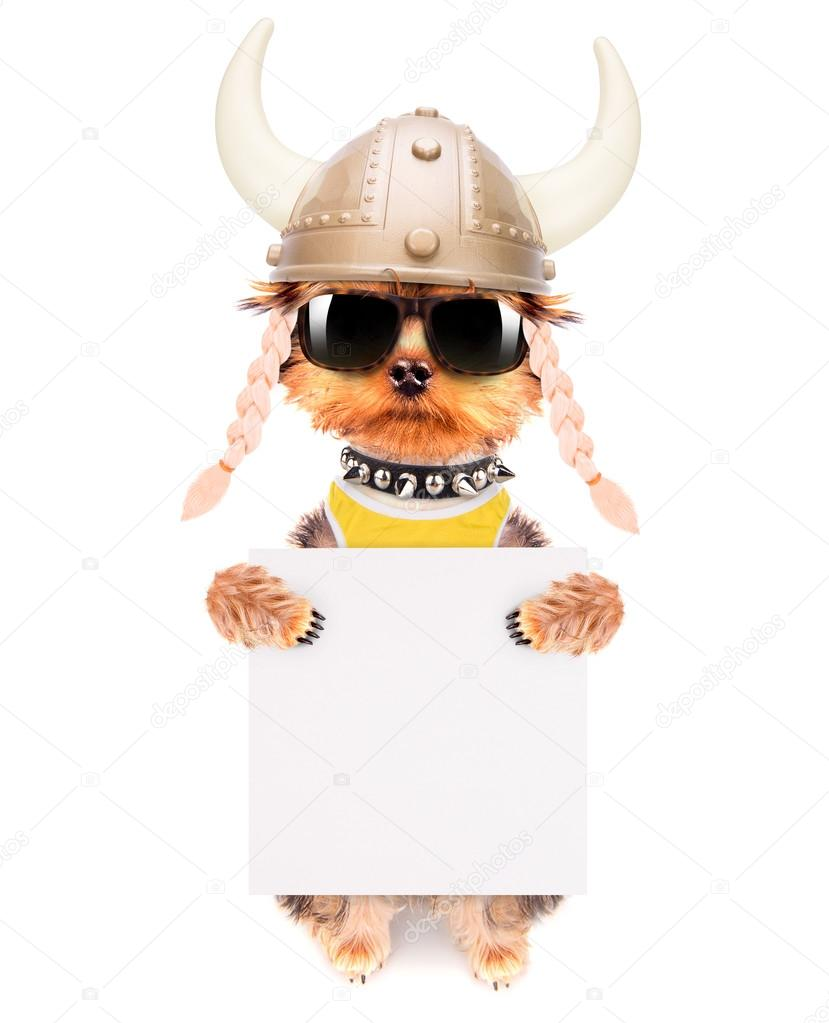 Vestida de blanco los vikings