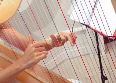 woman hands playing a harp