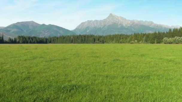 Zelená letní louka, tráva ve větru, vrchol Kriváň (slovenský symbol) s jasnou oblohou nad sebou