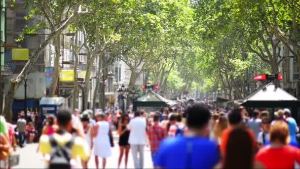 Crowdy Street