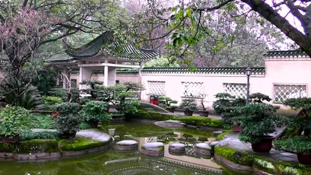 Landscape of chinese park.