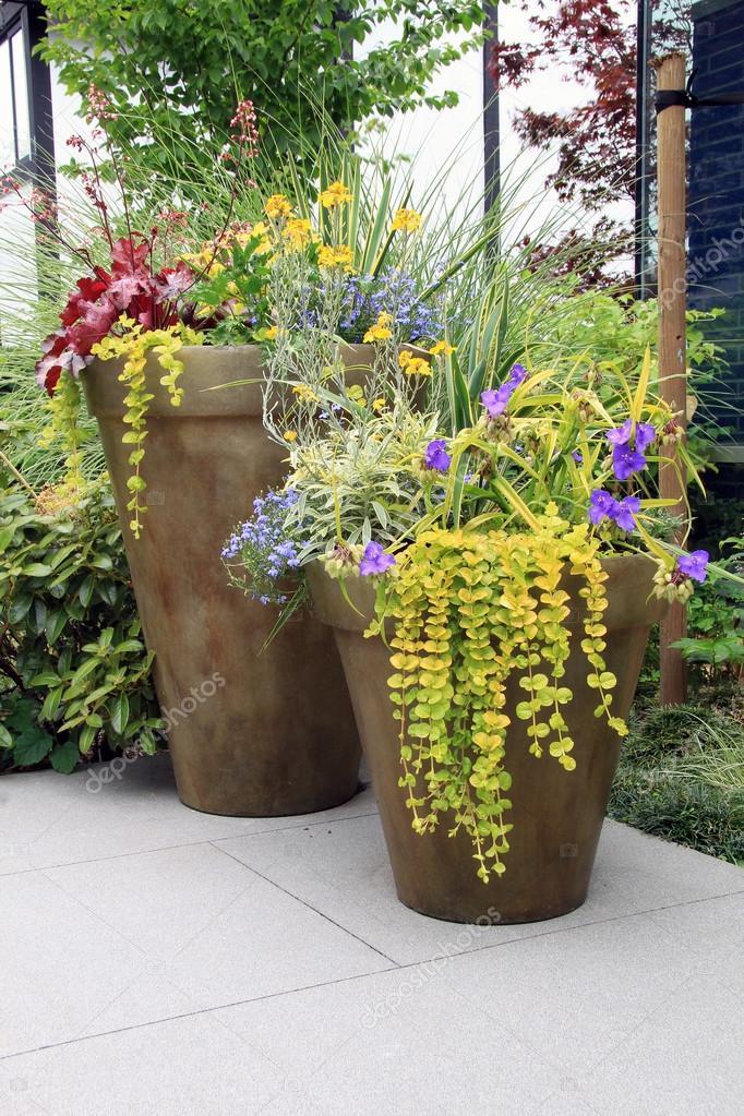 conteneurs de fleurs de jardin vivaces — Photographie Hannamariah ...